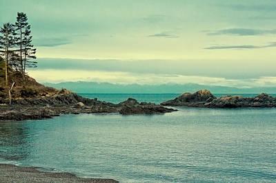 Photograph - The Waters Of Deception Pass by David Patterson