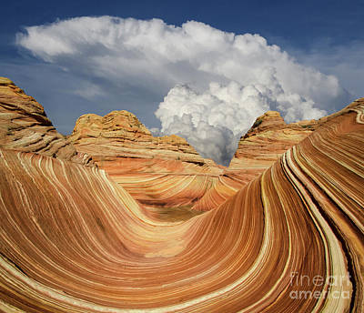 Photograph - The Wave Arizona Nature's Gemstone by Bob Christopher