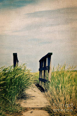 The Way Art Print by Angela Doelling AD DESIGN Photo and PhotoArt