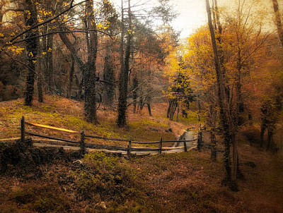 Wooden Fence Photograph - The Way by Jessica Jenney