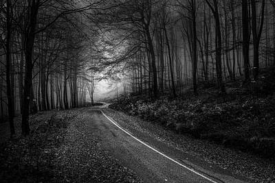 Photograph - The Way To The Light by Plamen Petkov
