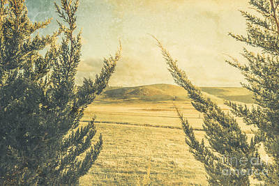 Photograph - The Wayback Meadow by Jorgo Photography - Wall Art Gallery