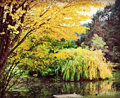 Photograph - The Wayfarer Pond by Mindy Bench