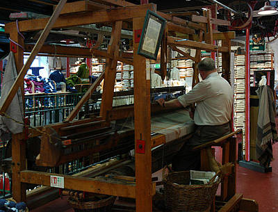 Photograph - The Weaver by Dianne Levy