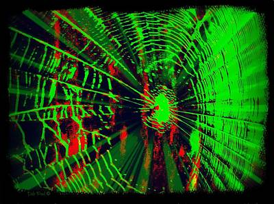 Photograph - The Web by Dale Paul