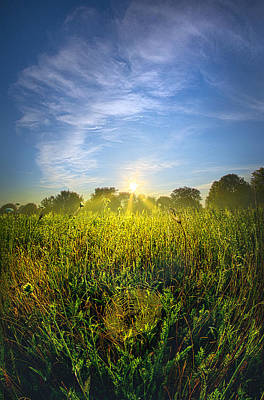 Photograph - The Web by Phil Koch
