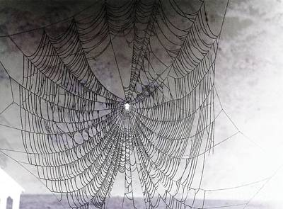 The Web We Weave Art Print