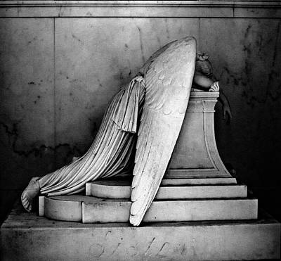 Peacock Feathers - The Weeping Angel by Jim Cook