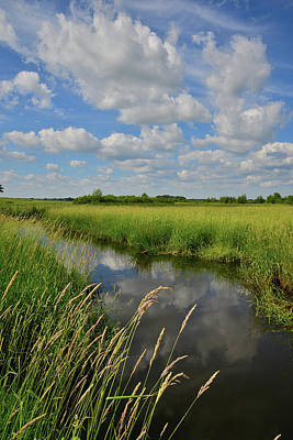 Photograph - The Wetlands Of Hackmatack National Wildlife Refuge by Ray Mathis