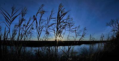 Photograph - The Wetlands Sunset by John Glass