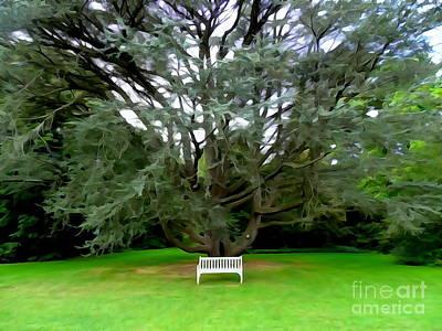 Digital Art - The White Bench by Ed Weidman
