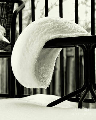 Photograph - The White Beret by Jon Burch Photography