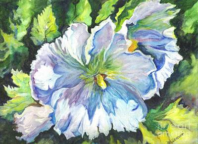 Hibiscus Drawing - The White Hibiscus In Early Morning Light by Carol Wisniewski