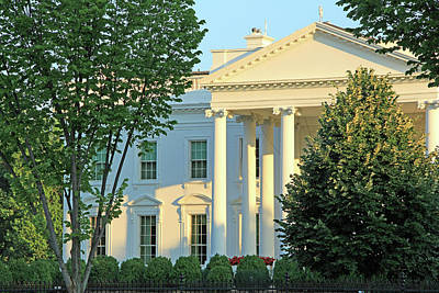 Photograph - The White House Through Trees by Cora Wandel