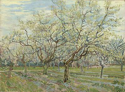 Painting - The White Orchard Arles, April 1888 Vincent Van Gogh 1853  1890 by Artistic Panda