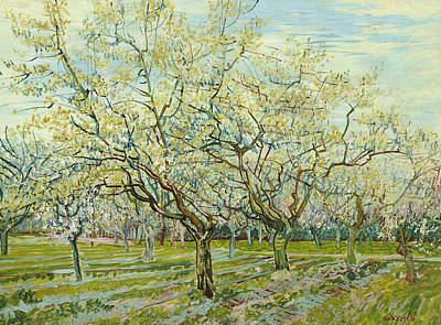 The White Orchard  Art Print by Vincent van Gogh