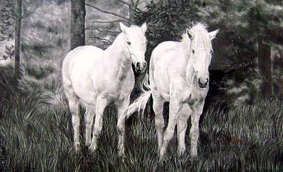 Drawing - The White Stallions by Mickey Raina