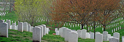 Photograph - The White Tombstones Of Arlington by Cora Wandel