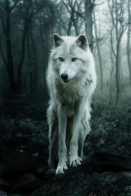 Canines Digital Art - The White Wolf by Julie L Hoddinott