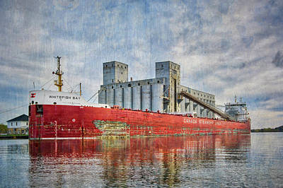 Photograph - The Whitefish Bay by Irwin Seidman