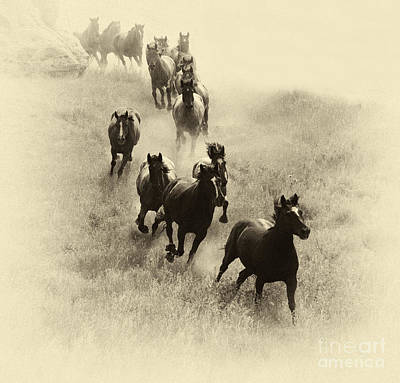 The Wild Bunch 1 Art Print by Bob Christopher