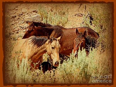 Photograph - The Wild Horse Threesome by Bobbee Rickard