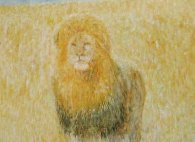 Painting - The Wild  Lion by Glenda Crigger