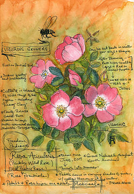 Painting - The Wild Rose by Katherine Miller