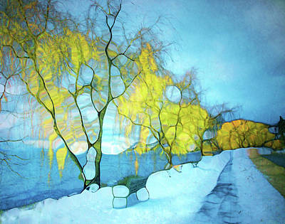 The Willow Tree Path In Winter Art Print