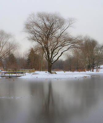 The Willows Park - Newtown Square In Winter Art Print by Bill Cannon