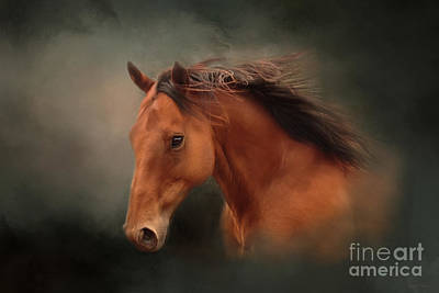 Photograph - The Wind Of Heaven - Horse Art by Michelle Wrighton