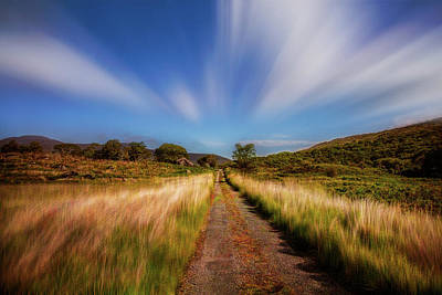 Photograph - The Windblown Wicklow Way by Debra and Dave Vanderlaan