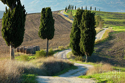 Photograph - The Winding Road - Tuscany by Brian Jannsen