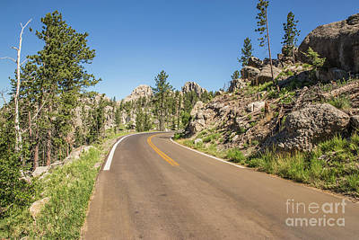 Nikki Vig Royalty-Free and Rights-Managed Images - The winding roads of the Needles Highway by Nikki Vig