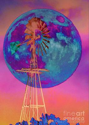 Photograph - The Windmill And Moon In A Sherbet Sky by Toma Caul