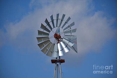 Photograph - The Windmill by Ray Shrewsberry