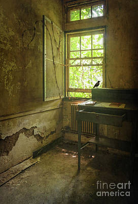 Photograph - The Window by Debra Fedchin
