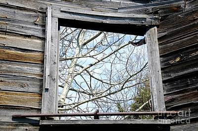 Photograph - The Window by Sandra Updyke