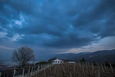 Photograph - The Wineyard by Jonas Sundberg