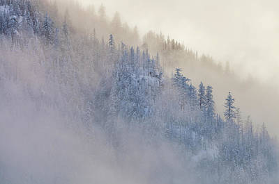 Photograph - The Winter Dreamland 1 by Jonathan Nguyen