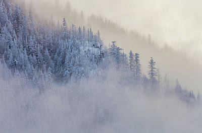 Photograph - The Winter Dreamland  3 by Jonathan Nguyen