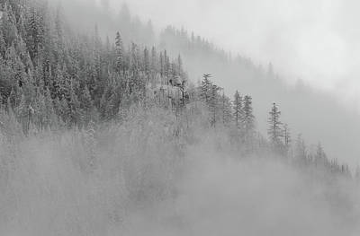 Photograph - The Winter Dreamland Bw 1 by Jonathan Nguyen