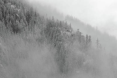 Photograph - The Winter Dreamland Bw 2 by Jonathan Nguyen