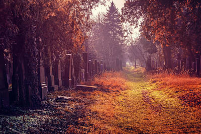 Cemetery Photograph - The Winter Path  by Carol Japp