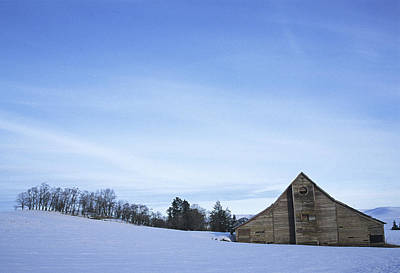 Photograph - The Winter Sentinal by Doug Davidson
