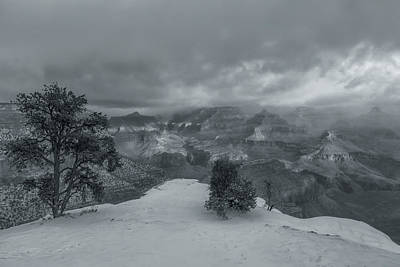 Photograph - The Winter Solitude by Jonathan Nguyen