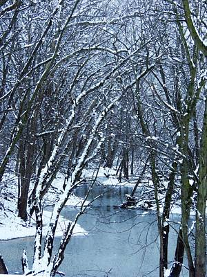 Photograph - The Winter Stream  by Lori Frisch