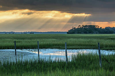 Photograph - The Wire Fence -  Seabrook Island, Sc by Donnie Whitaker