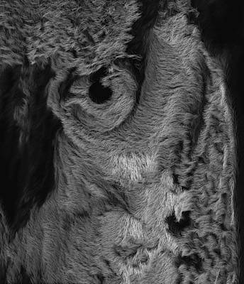 The Old Owl That Watches Blk Art Print