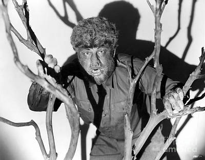 Wolfman Photograph - The Wolfman, 1941 by Granger